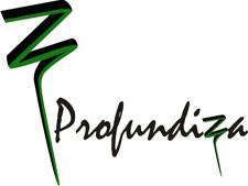 1296819871422_logoprofundiza